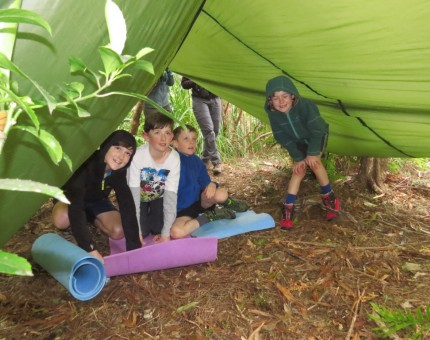 Erecting a tent fly shelter